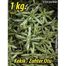 Kekik Tohumu Zahter Satureja hortensis L - 1 KG.