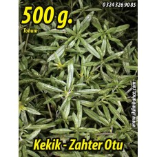 Kekik Tohumu Zahter Satureja hortensis L - 500 g.