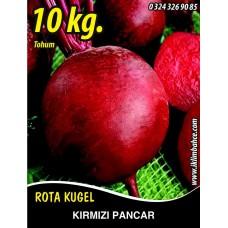 Kırmızı Pancar Tohumu - 10 KG
