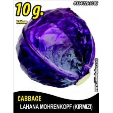 Lahana Tohumu Mohrenkopf (Kırmızı) - 10 g (~ Takribi 2000 Tohum)