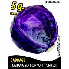 Lahana Tohumu Mohrenkopf  (Kırmızı) - 5 g (~ Takribi 650 Tohum)