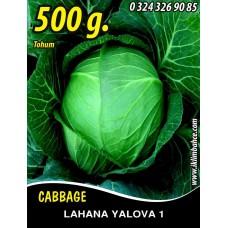 Lahana Tohumu Yalova 1 (Beyaz ) Tnk 500g