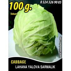 Lahana Tohumu Yalova Sarmalık (Beyaz) - 100 g