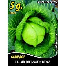 Lahana Tohumu Brunswick (Beyaz) - 5 g (~ Takribi 650 Tohum)