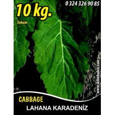 Lahana Tohumu Karadere (Yaprak) - 10 KG