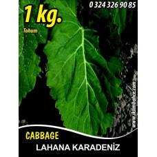 Lahana Tohumu Karadere (Yaprak); - 1 KG