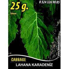 Lahana Tohumu Karadere (Yaprak) - 25g (~ Takribi 3250 Tohum)