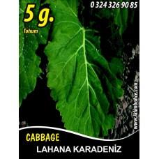 Lahana Tohumu Karadere (Yaprak); - 5g (~ Takribi 650 Tohum)