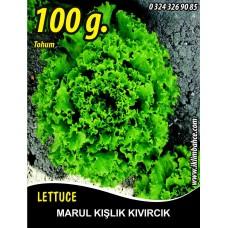 Marul Tohumu Kışlık Kıvırcık - 100 g.