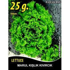 Marul Tohumu Kışlık Kıvırcık - 25 g. (~ Takribi 17500 Tohum)