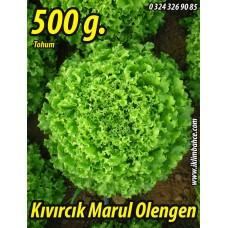 Marul Tohumu Olengen 500 g.