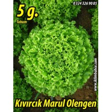 Marul Tohumu Olengen 5 g. (~ Takribi 3500 Tohum)