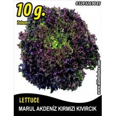 Marul Tohumu Akdeniz Kıvırcığı 10 g. (~ Takribi 5500 Tohum)