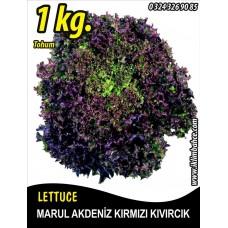 Marul Tohumu Akdeniz Kıvırcığı 1 KG
