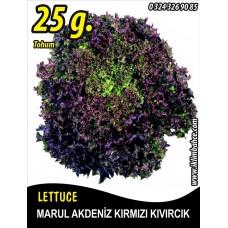 Marul Tohumu Akdeniz Kıvırcığı 25 g. (~ Takribi 13750 Tohum)
