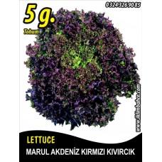 Marul Tohumu Akdeniz Kıvırcığı 5 g. (~ Takribi 3500 Tohum)