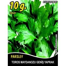 Maydanoz Tohumu Toros Maydanozu - 10 g (~ Takribi 4000 Tohum)