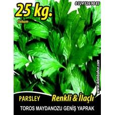 Maydanoz Tohumu Toros Maydanozu 25 KG (Yerli) İlaçlı-Renkli
