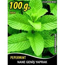 Nane Tohumu Geniş Yaprak - 100 g