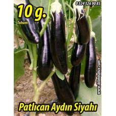 Patlıcan Tohumu Aydın Siyahı 55 - 10 g. (~ Takribi 1300 Tohum)