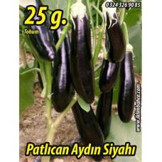 Patlıcan Tohumu Aydın Siyahı 55 - 25 g. (~ Takribi 5000 Tohum)