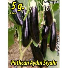 Patlıcan Tohumu Aydın Siyahı 55 - 5g (~ Takribi 650 Tohum)