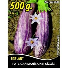 Patlıcan Tohumu Manisa (Kır) 500 g