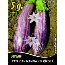 Patlıcan Tohumu Manisa (Kır) 5 g. (~ Takribi 650 Tohum)