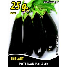 Patlıcan Tohumu Pala 49 - 25g (~ Takribi 5000 Tohum)