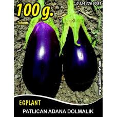 Patlıcan Tohumu Adana Dolmalık - 100 g