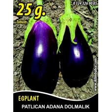 Patlıcan Tohumu Adana Dolmalık - 25 g (~ Takribi 3.250Tohum)