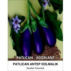 Patlıcan Tohumu Antep Dolmalık - 1 Kg