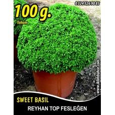 Reyhan Tohumu Top Fesleğen - 100 g