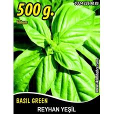Reyhan Tohumu Fesleğen Yeşil Renk Tnk 500g