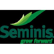 Seminis Domates Anacı  SVTX2791 (KOMANDO)  1000 Tohum