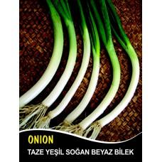 Soğan Tohumu Demet Yeşil - 10 g (~ Takribi 1800 Tohum)