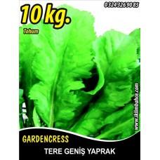 Tere Tohumu Toros Yeşili - 10 KG