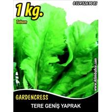 Tere Tohumu Toros Yeşili - 1 KG