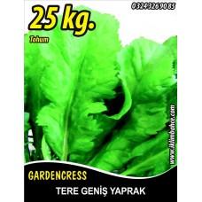 Tere Tohumu Toros Yeşili - 25 KG