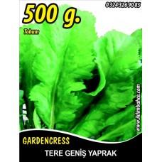 Tere Tohumu Toros Yeşili - 500 g