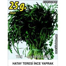 Tere Tohumu İnce (Tel) 25 g.