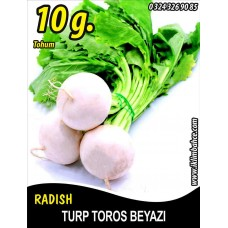 Turp Tohumu Toros Beyazı - 10 g (~ Takribi 900 Tohum)