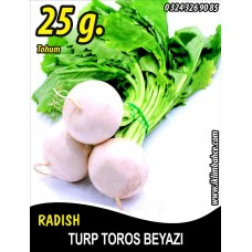Turp Tohumu Toros Beyazı - 25 g. (~ Takribi 2250 Tohum)