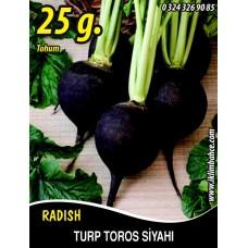 Turp Tohumu Toros Siyahı - 25g (~ Takribi 1500 Tohum)