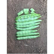 Fasulye Tohumu ÖZLEM ( Sırık ) - 10 kg
