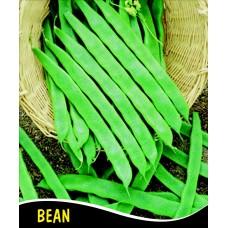 Fasulye Tohumu Panter ( Sırık ) 100 gr