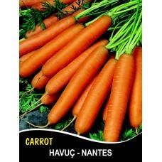 Havuç Tohumu Scarlet Nantes - 25g (~ Takribi 10000 Tohum)
